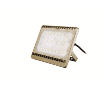 Đèn pha LED Philips BVP161 LED55/WW 70W 220-240V WB GOLD/GREY